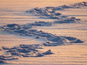 Bludiště ve sněhu anebo Eskymácká honička